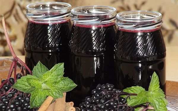 Как сушить черноплодную рябину в домашних условиях: 4 способа