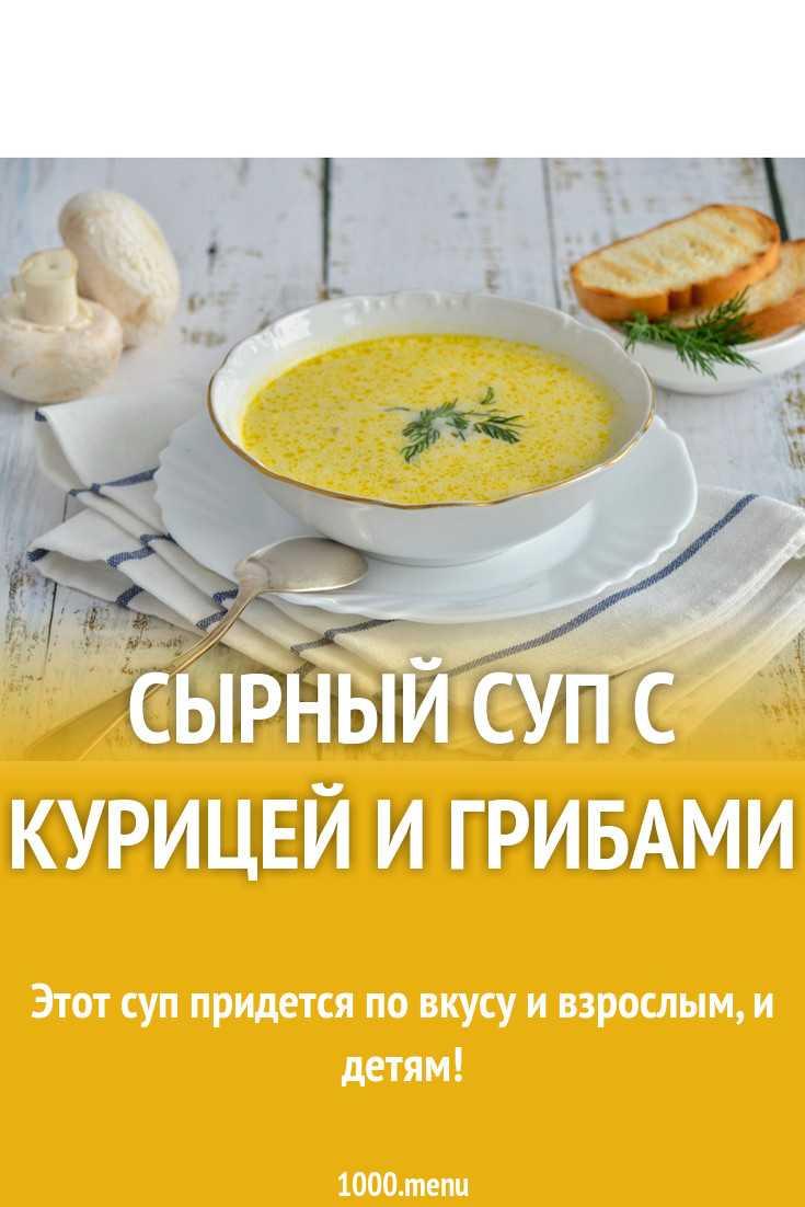 Как правильно готовить суп-пюре со сливками? рецепты приготовления с различными грибами и овощами