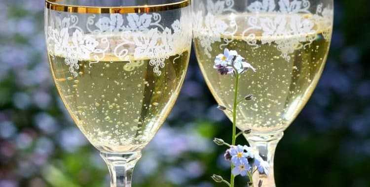 Вино из белого винограда в домашних условиях простой рецепт