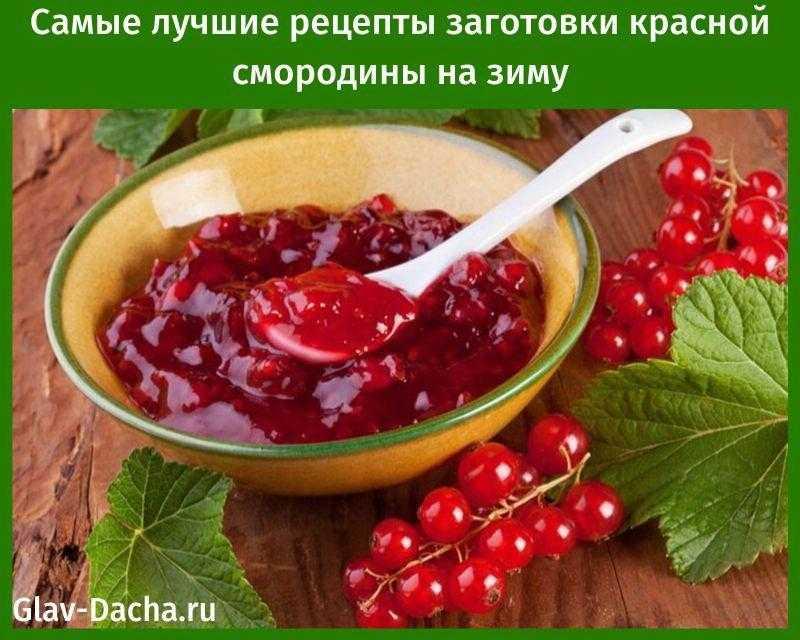 Варенье из красной смородины — свежее, без варки, пятиминутка