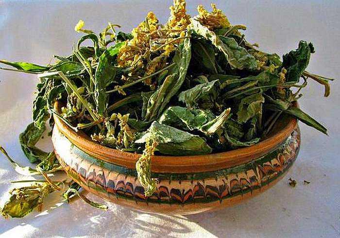 Что делать с боярышником сушеным. сушёный боярышник – кладезь витаминов   здоровье человека
