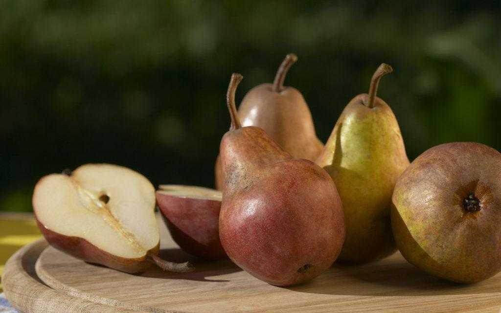 Рецепт моченых груш в домашних условиях