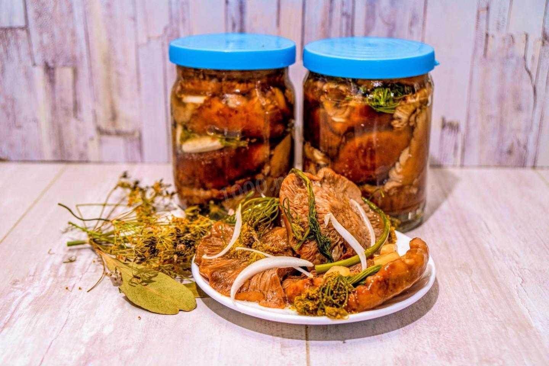 Быстрая засолка рыжиков — пошаговый рецепт с фото