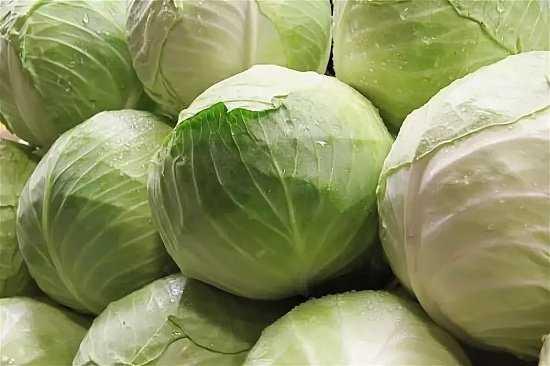 Как выбрать капусту в магазине для квашения. какую капусту выбрать для квашения