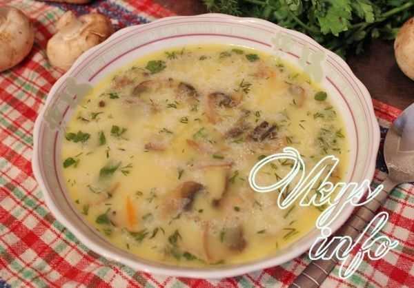 Суп пюре на курином бульоне из шампиньонов