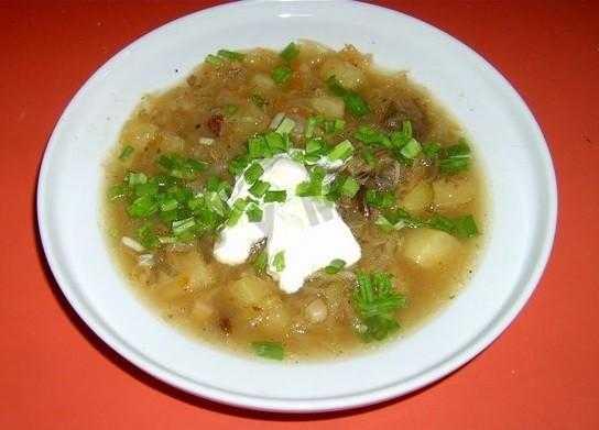 Как варить суп из подберёзовиков — домашние рецепты