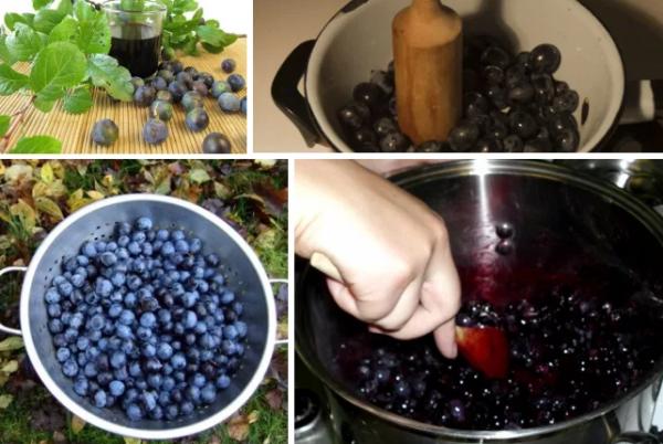 Домашнее вино из терна: простой рецепт приготовления, как сделать в домашних условиях