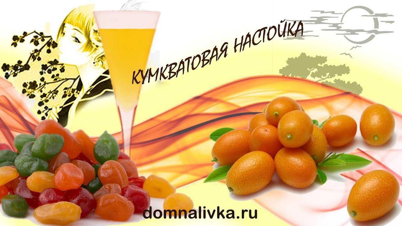 Рецепты клюквенной настойки на спирту, водке и самогоне
