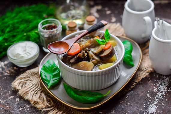 Грибной суп из замороженных грибов - исконно славянское блюдо с историей: рецепт с фото и видео