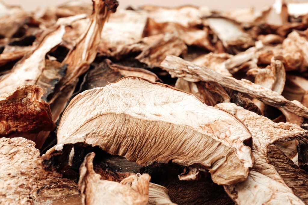Как сушить грибы в домашних условиях правильно
