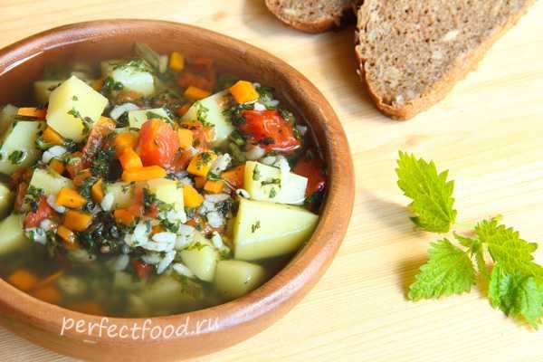 Суп из крапивы - проверенные рецепты. как правильно и вкусно приготовить суп из крапивы. - автор екатерина данилова - журнал женское мнение