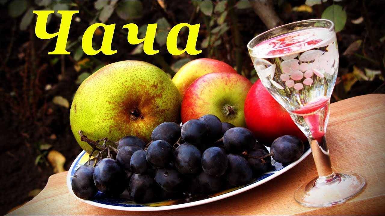 Чача из винограда в домашних условиях рецепт без дрожжей