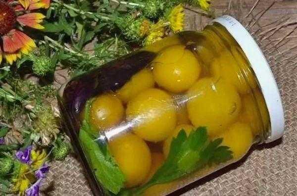 Заготовки из алычи на зиму - вкусные рецепты с фото