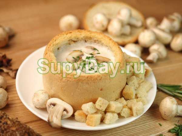 Суп из свежих белых грибов - как сварить по вкусным пошаговым рецептам с фото