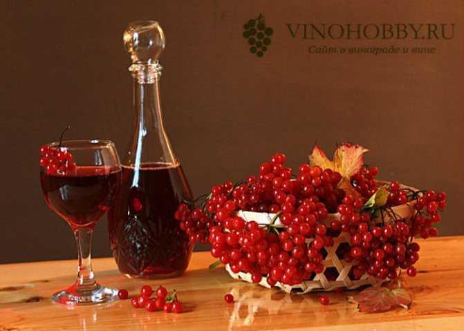 Домашний рецепт вина из клюквы (клюквенного вина)