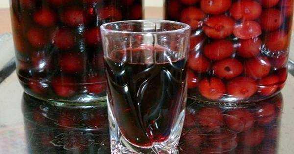 Как сделать вино из забродившего компота: рецепт приготовления в домашних условиях