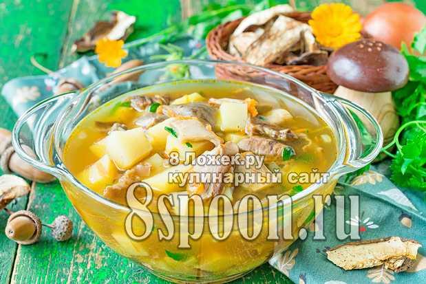 Суп пюре из белых грибов