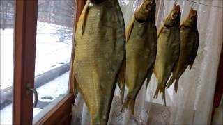 Как закоптить рыбу