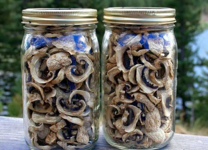 Хранение сушеных грибов: способы и продолжительность.