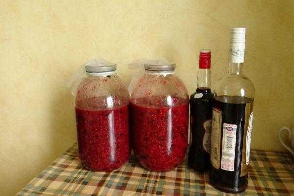 Вино из смородины в домашних условиях – простые рецепты смородинового вина