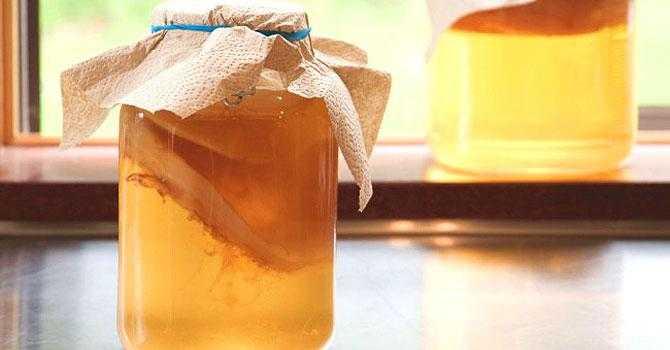 5 причин завести чайный гриб в банке - новости медицины
