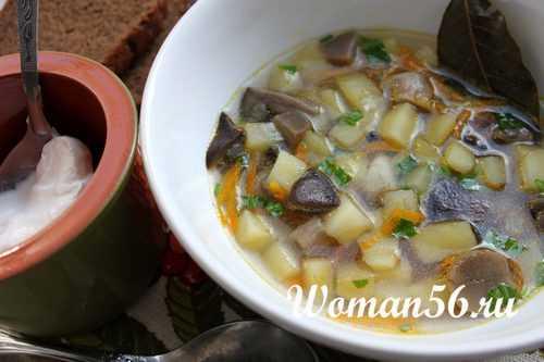 Как варить суп из подберезовиков - лучший огород