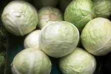 Заквасить капусту - как выбрать и как квасить - рецепты