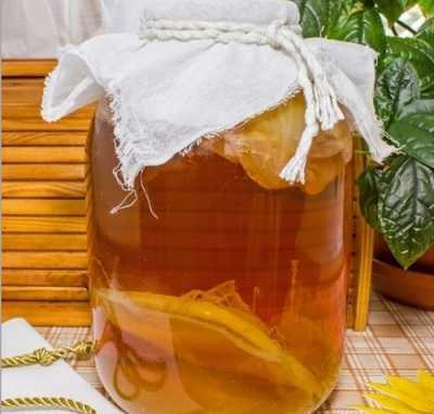 Чайный гриб: полезные и лечебные свойства и противопоказания для женщин, мужчин и детей, при беременности и грудном вскармливании, отзывы. как употреблять чайный гриб для похудения, в косметологии и лечебных целях?