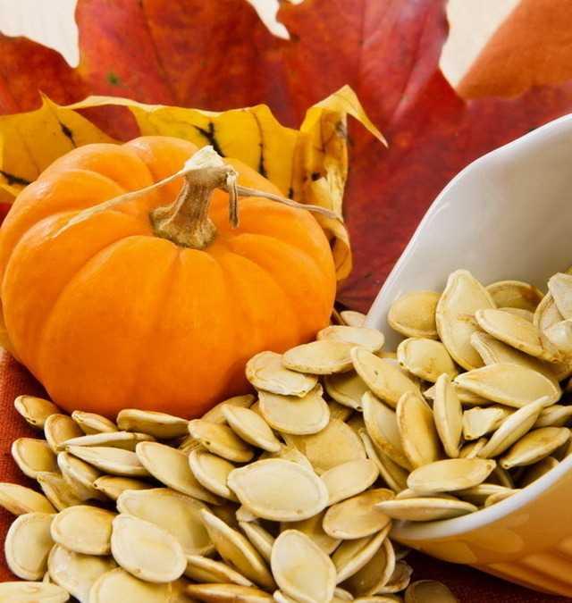 Польза и вред тыквенных семечек: состав и свойства, калорийность, чем полезны и сколько нужно съедать в день