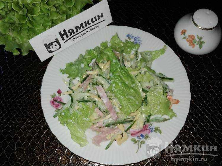 Салат с ветчиной и сыром домашний с йогуртом рецепт с фото пошагово и видео - 1000.menu