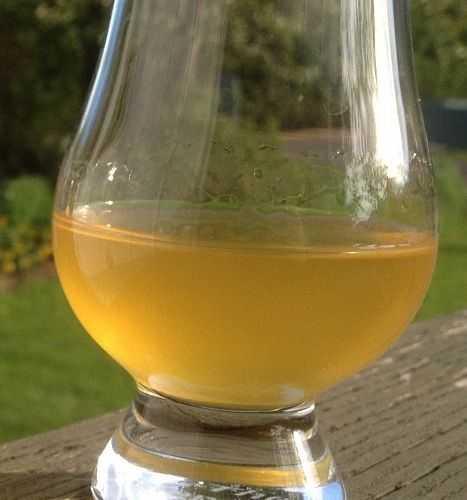 Домашнее вино из персиков своими руками. классический рецепт
