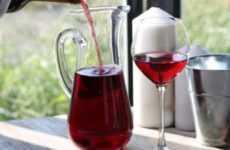 Вино из цветков черной бузины