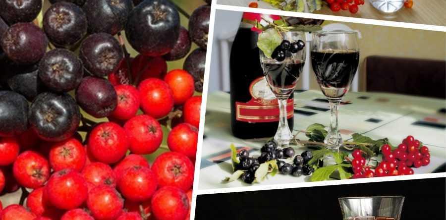 Ликер из черноплодной рябины с вишневыми листьями: правила подготовки и секреты приготовления. Лучшие рецепты на водке, спирту, коньяке, со специями и травами.