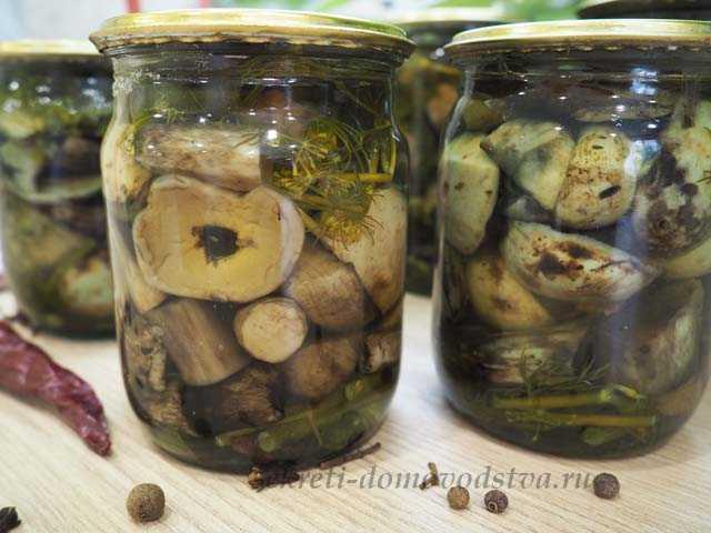 Сколько и как варить грибы подосиновики и подберезовики: перед жаркой и до готовности (+17 фото)