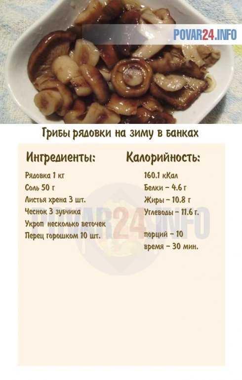 Маринованные рядовки: лучшие рецепты приготовления в домашних условиях. маринование рядовок на зиму: пошаговые рецепты