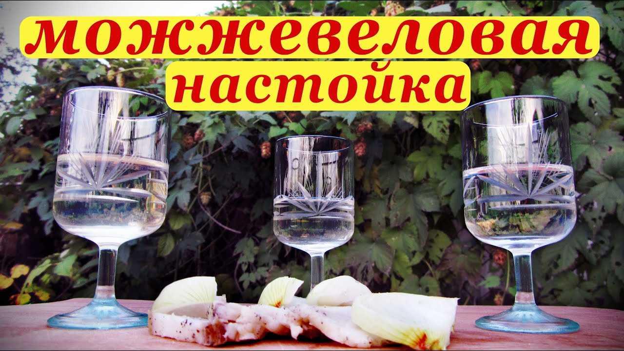 Можжевеловая водка: рецепт приготовления в домашних условиях, второе название напитка, полезные свойства и противопоказания, нюансы технологического процесса, способ хранения.