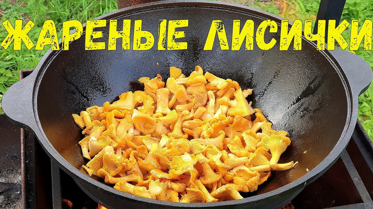 Лисички с мясом: рецепты сытных грибных блюд