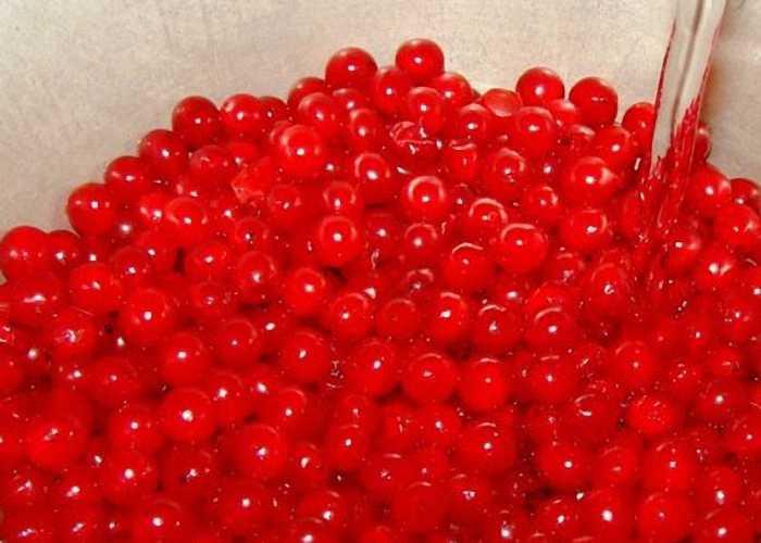 Настойка калины красной: что лечит и как ее принимать | народная медицина