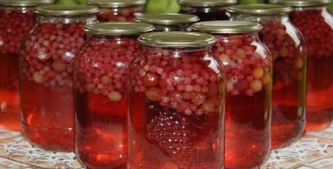 Компот из красной смородины и малины на зиму - 10 пошаговых фото в рецепте