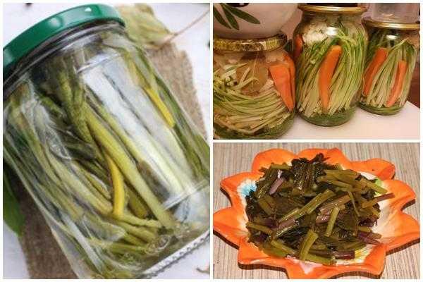 Соленый чеснок: любимые рецепты опытных домохозяек и кулинаров