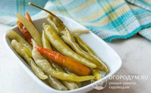 Как приготовить перец цицак: рецепты острой кавказской закуски