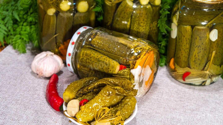 5 самых вкусных рецептов маринованных огурцов с болгарским перцем на зиму