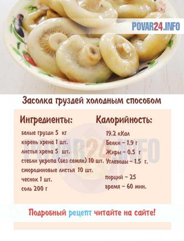 Рецепты приготовления маринованных груздей: как мариновать грузди в домашних условиях (с фото и видео)