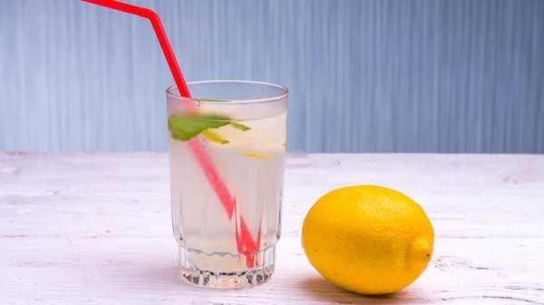 Базилик лимонный: полезные свойства и применение