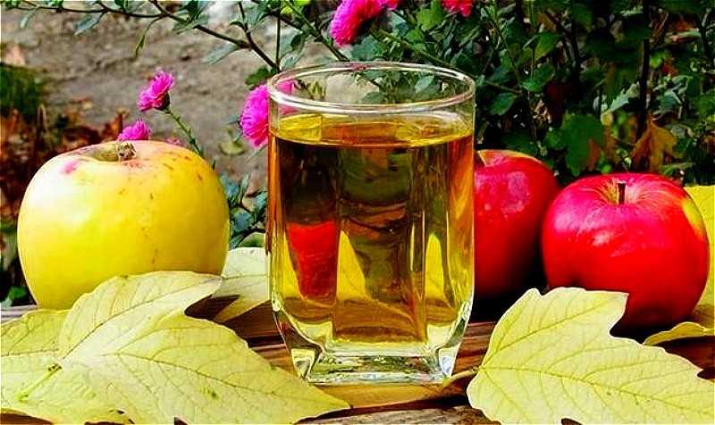 Простой рецепт домашнего вина из яблок