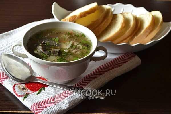 Суп из подберезовиков: рецепты с фото