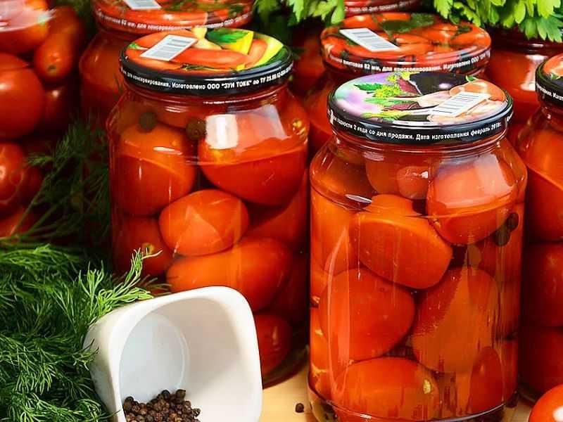 Как засолить зеленые помидоры на зиму в банках: простые рецепты домашних заготовок