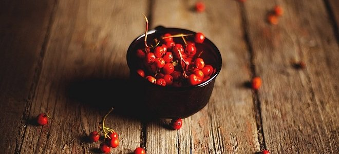 Варенье из красной рябины - как приготовить, польза