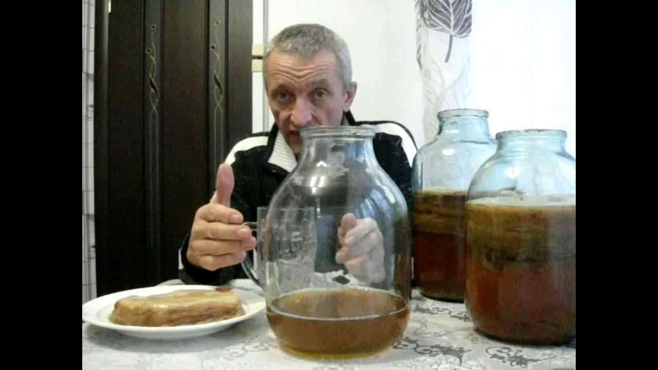 Чайный гриб: правила ухода и приема