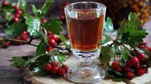 Рецепты домашнего вина из боярышника – простые и не очень